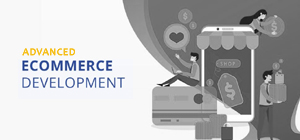 eCoimmerce Marketplace Website solution providers in India